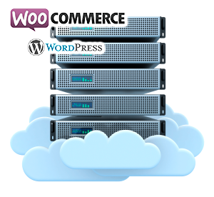 Web Hosting Woocommerce